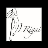 I rigai logo e link